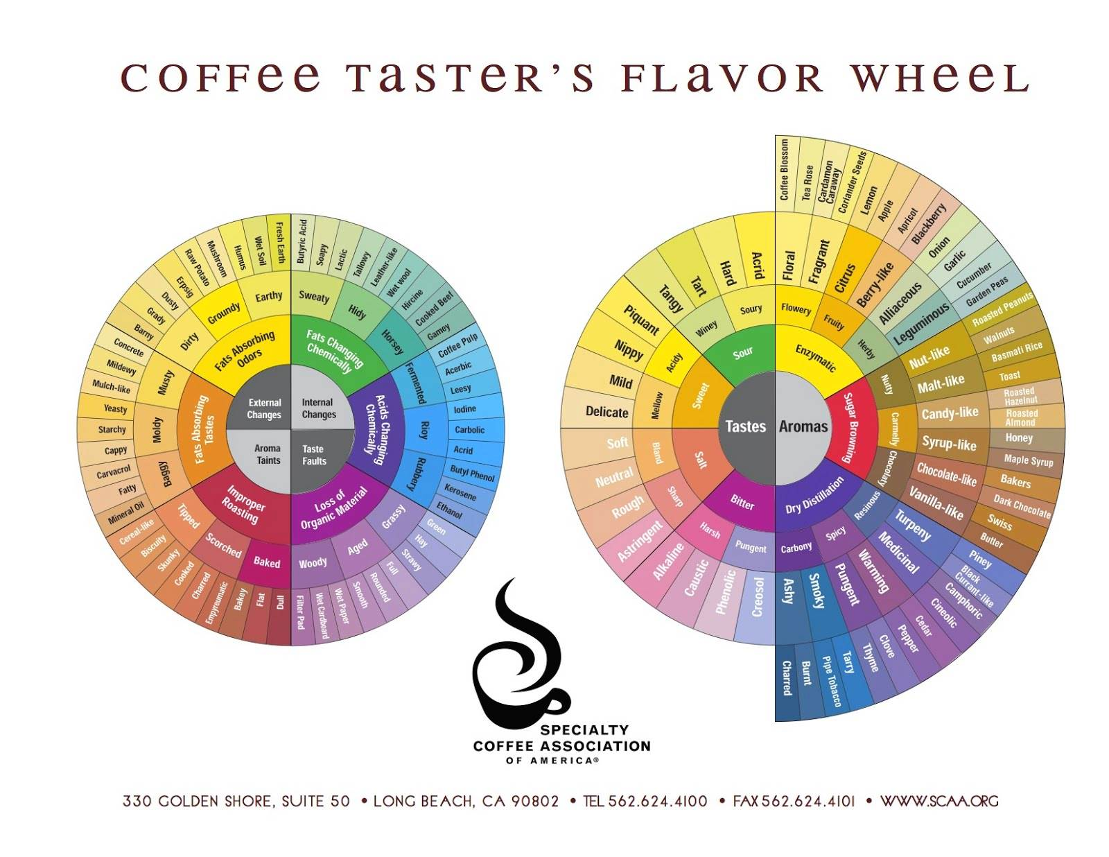 scaa-coffee_tasters_flavor_wheel