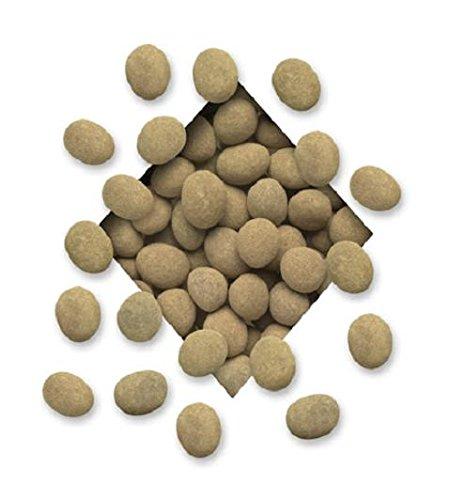 Cinnamon-Chocolate-Covered-Coffee-Espresso-Beans