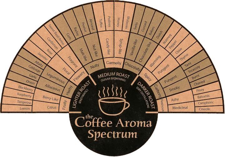 coffee-aroma-spectrum